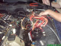 Prins VSI ECU and wiring